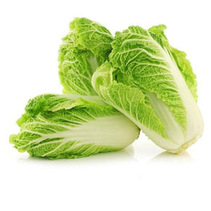 Cabbage - Chinese Leaf