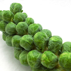 Sprouts on Stalk