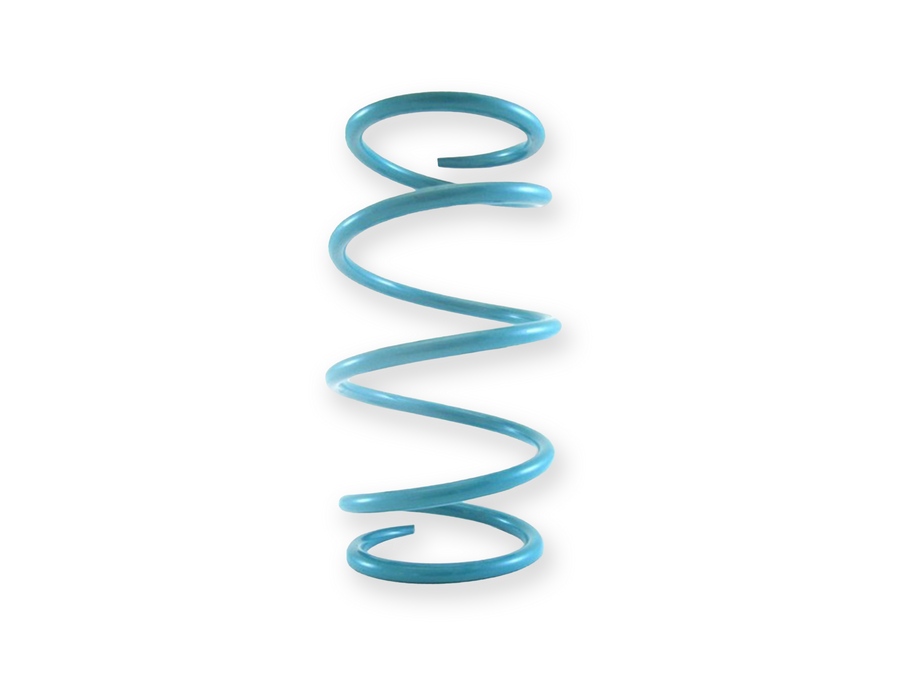 Secondary Spring (teal) for Polaris RZR XPT