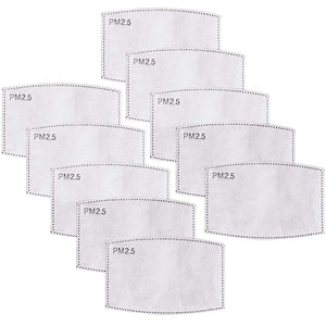 PM2.5 Filters - 10 PACK