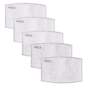 PM2.5 Filters - 5 PACK