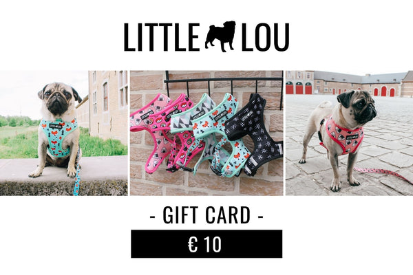 Cadeaubon - Little Lou The Brand