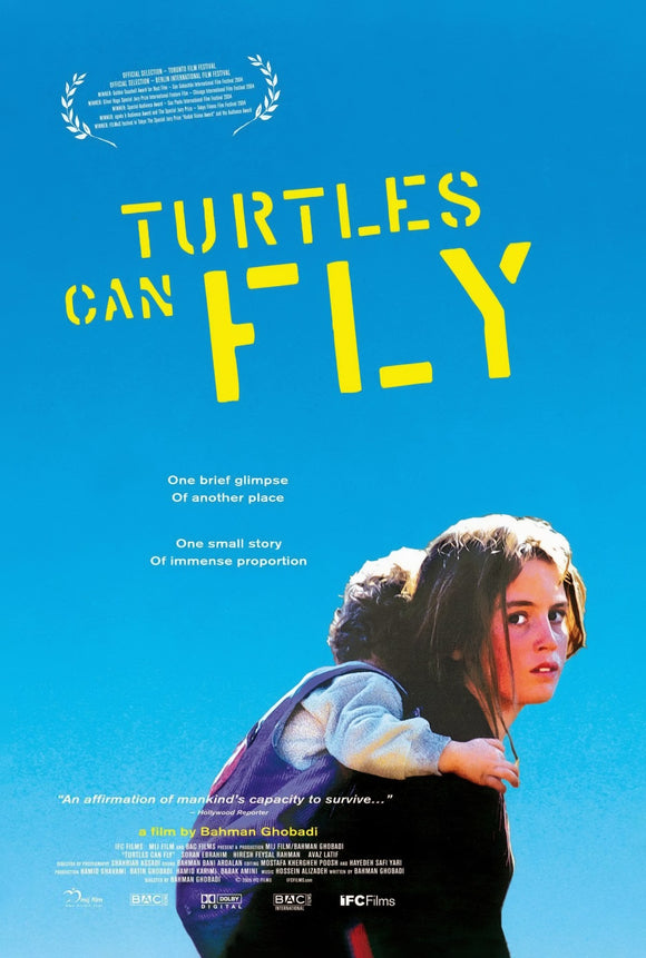 TURTLES CAN FLY  (SINGLE SIDED)