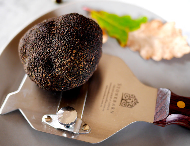 sacchi truffle the best there is Italy, freshly preserved , black and white truffle , in butter and parmesan sauce on ravioli e tagliatelle