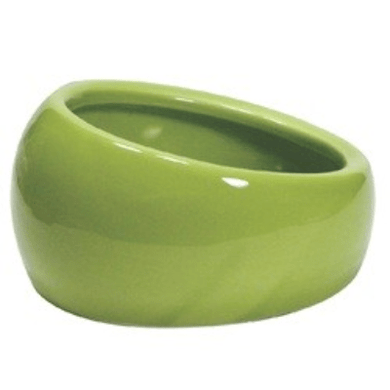 Living World - Ergonomic Dish Green - Small