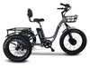 Emojo Caddy Pro Fat Tire 500W 48V Electric Tricycle