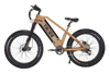 Bikonit HD 750 All Terrain Fat Tire Electric Bike