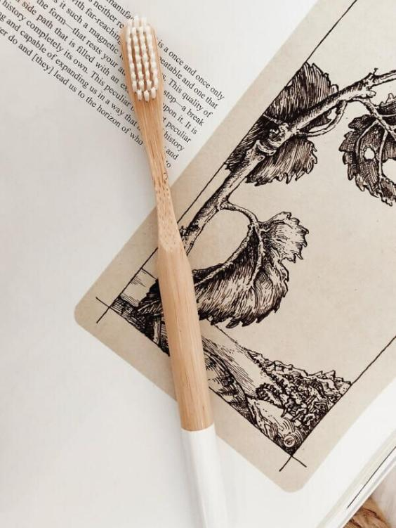 Earth Hero Bamboo Toothbrush - Boho Buys