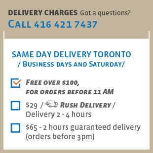 Same day delivery Toronto