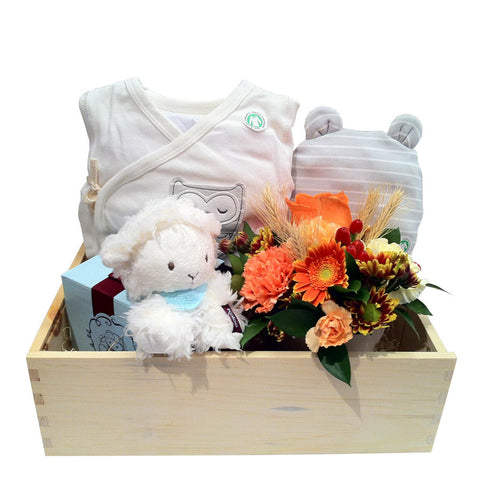 Baby Organic Gift Basket With Flower Bouquet