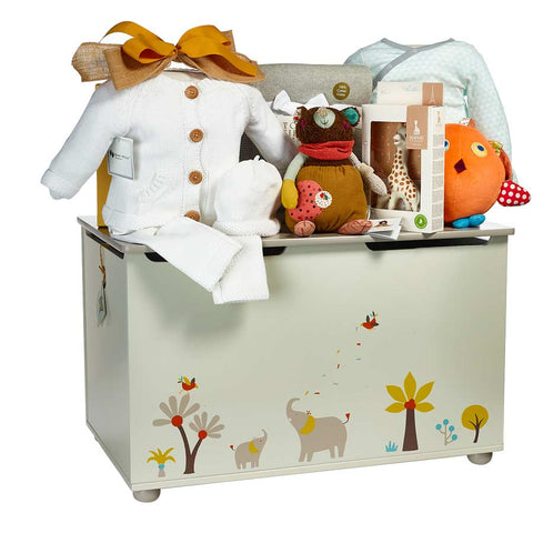 Baby Toy Chest Gift