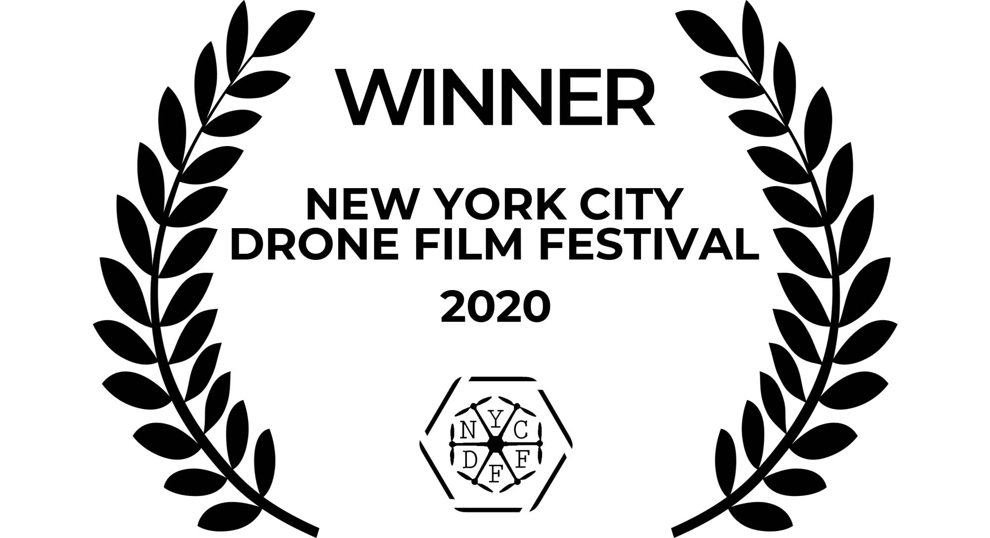 New York City Drone Festival Johnny FPV LUTS