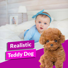 Load image into Gallery viewer, Realistic Teddy Dog
