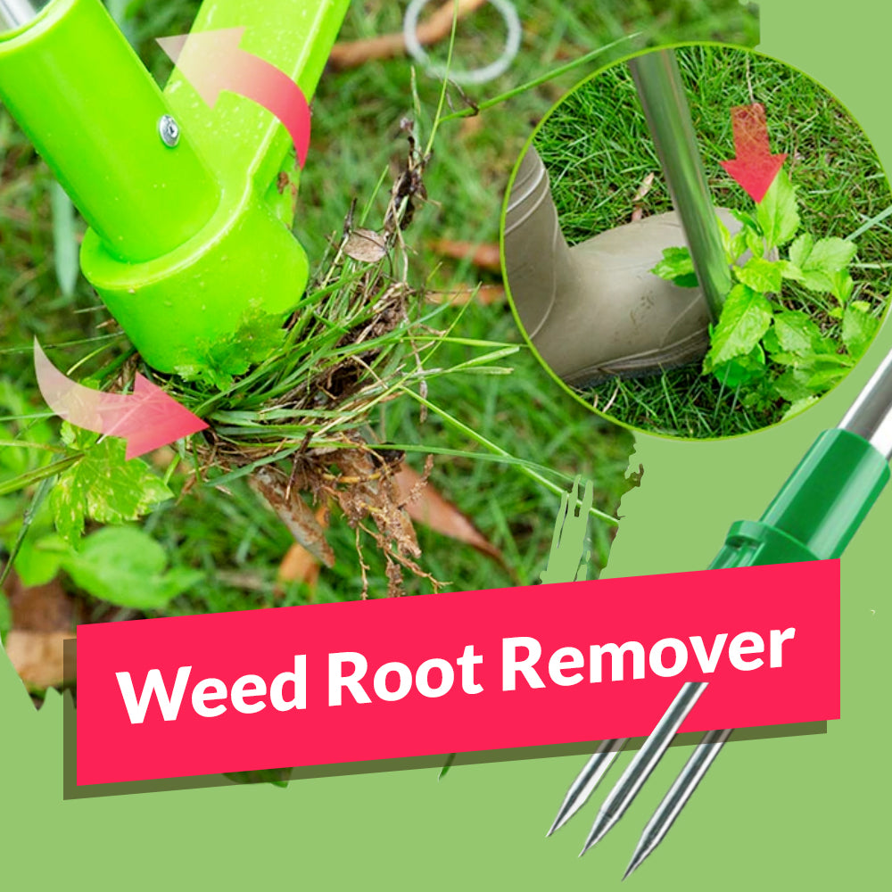 Weed Root Remover