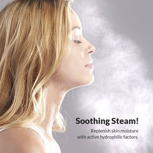 Spa Facial Steamer