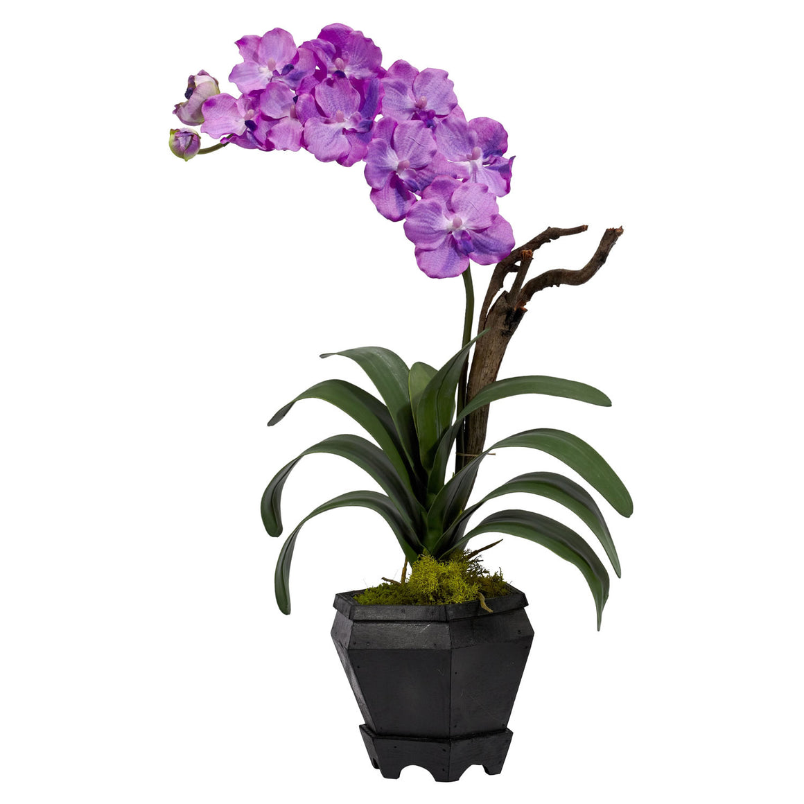 Purple Vanda With Black Hexagon Vase Silk Arrangement