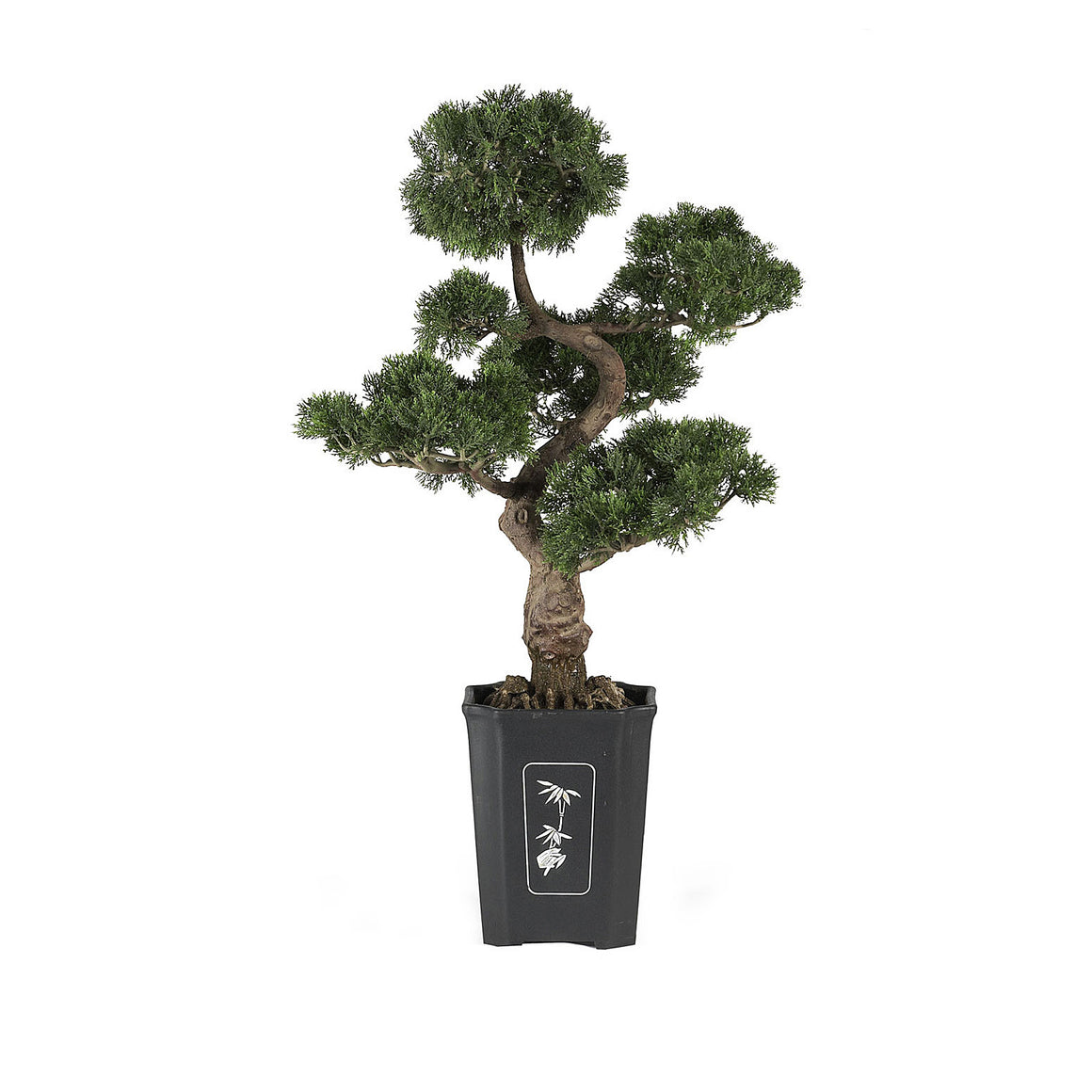 Cedar Bonsai Silk Plant 36""