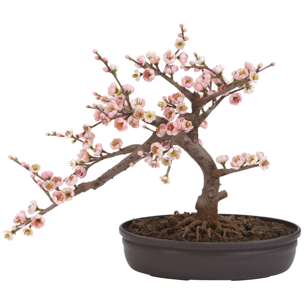 Cherry Blossom Bonsai Silk Tree 15""