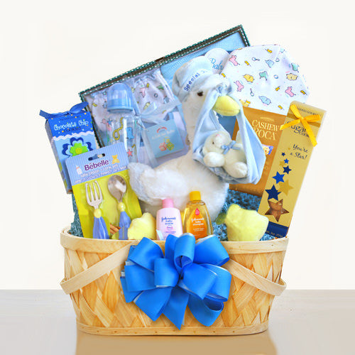 New Arrival Baby Boy Stork Gift Basket