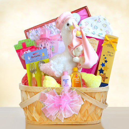 New Arrival Baby Girl Stork Gift Basket