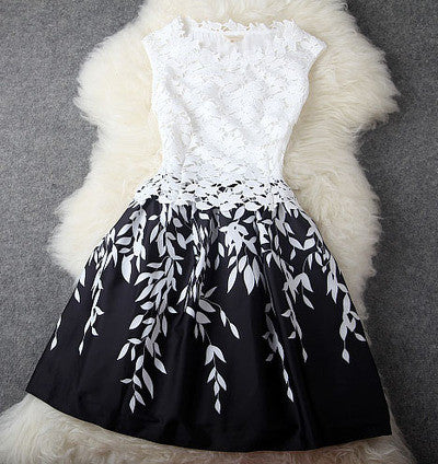 Embroidered Lace Dress In Black and White