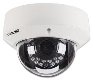 IDC-757IR Outdoor Night Vision Megapixel Network Dome Camera Image 1