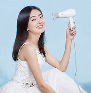 Maxi HP Portable Hair Dryer