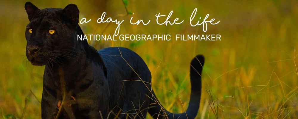 A DAY IN THE LIFE OF A NATIONAL GEOGRAPHIC FILMMAKER