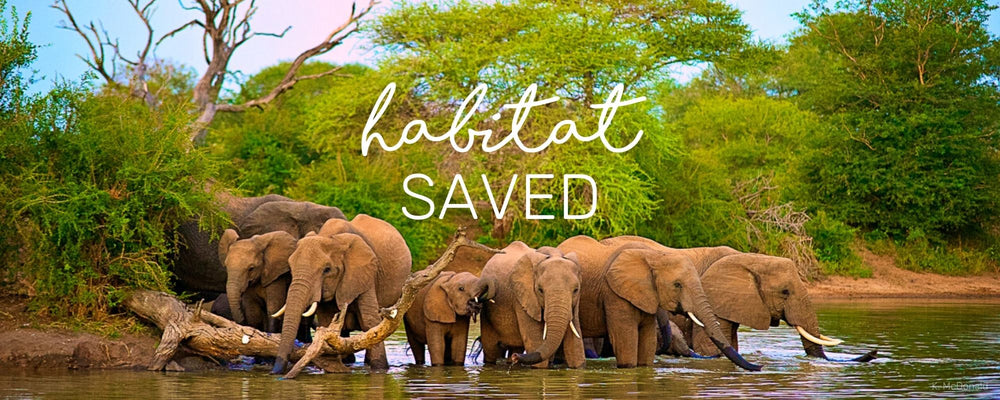 HABITAT SAVED!