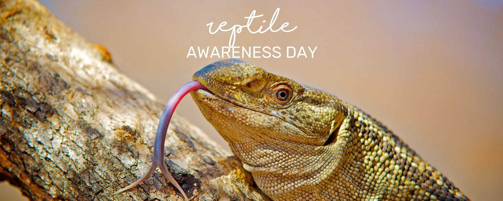 REPTILE AWARENESS DAY