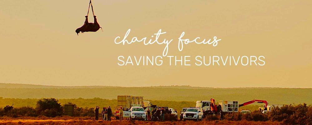 CHARITY FOCUS: SAVING THE SURVIVORS