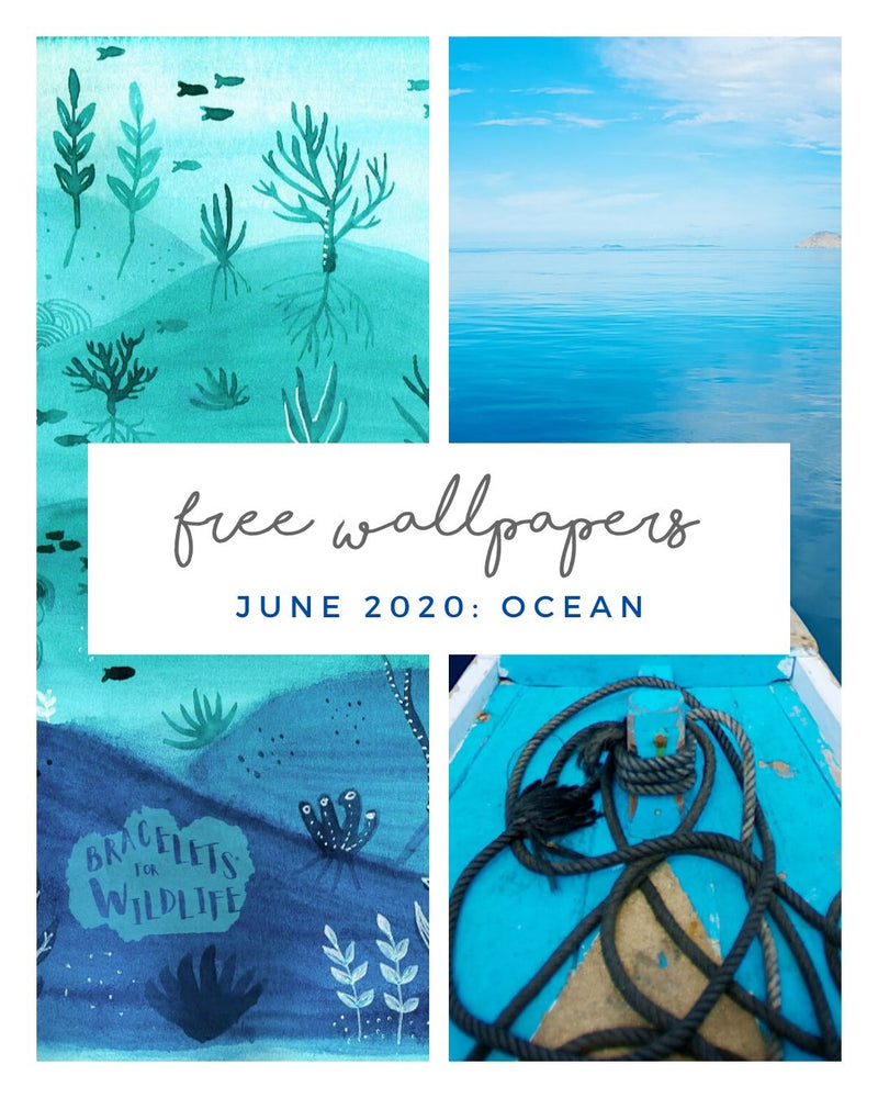 FREE JUNE DOWNLOADS