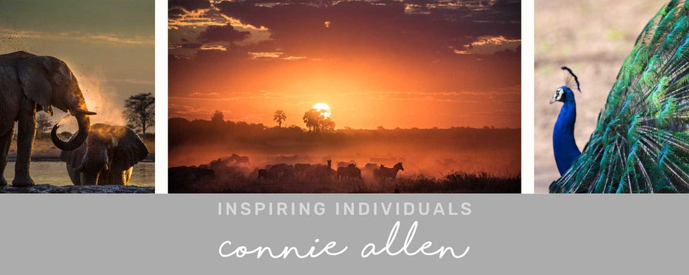 INSPIRING INDIVIDUALS: Connie Allen