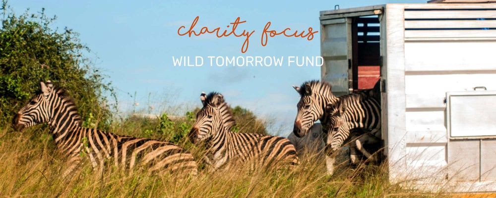 CHARITY FOCUS: WILD TOMORROW FUND