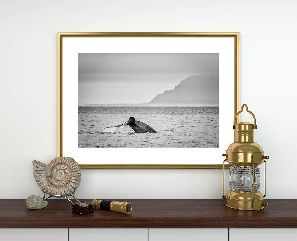 Load image into Gallery viewer, 'Blue Whale I'