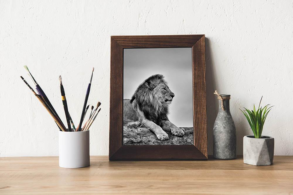 Load image into Gallery viewer, 'Leo'