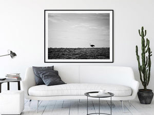 Load image into Gallery viewer, 'Lone Ostrich' African Photo Print - Wild In Africa