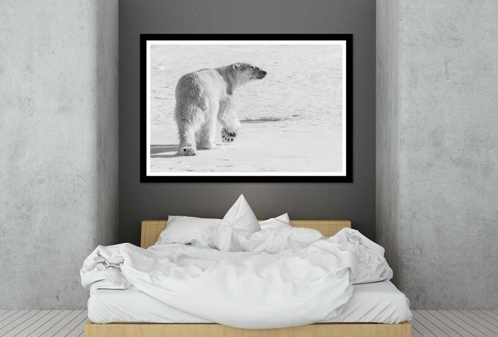 Load image into Gallery viewer, 'The Look' Fine Art Polar Bear Print - Wild In Africa