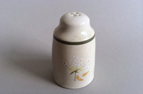 Royal Doulton - Will O' The Wisp - Thick Line - Salt Pot - 4 holes - The China Village