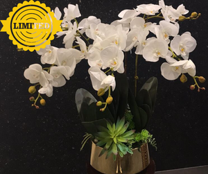 Artificial White Orchids | Flower Basket