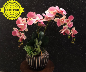 Artificial Pink Orchids (2 in 1) | Flower On The Vase