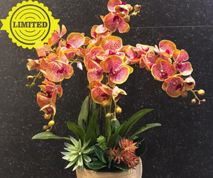 Artificial Purple Orchids with Orange Edge (5 in 1) | Flower in the vase