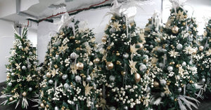(READY STOCK) Christmas Tree, 5FT Quebee Fir Christmas tree Free Baubles, Premium Quality