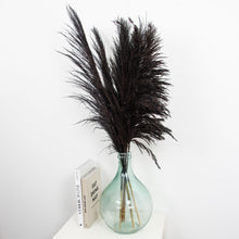 Load image into Gallery viewer, Mixed Pampas Black