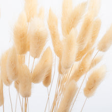 Load image into Gallery viewer, Bunny Tails Cream