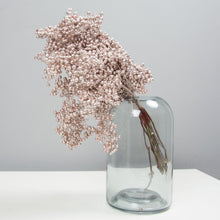 Load image into Gallery viewer, Dried Pepper Berries - Champagne Pink