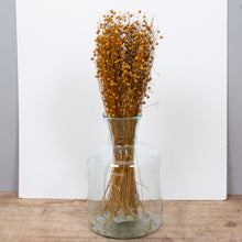 Load image into Gallery viewer, Flax Happy Flower Mustard Bunch