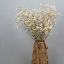 Load image into Gallery viewer, Gypsophila Natural Preserved Flowers