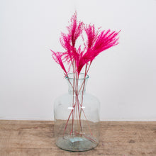 Load image into Gallery viewer, Fluffy Mini Pampas Grass - Hot Pink