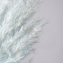 Load image into Gallery viewer, Pampas Grass Type 1 Misty Blue